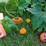 Fall Craft: Upcycled Pumpkin Patch