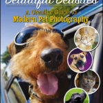 Beautiful Beasties Pet Photography Book Giveaway