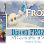 Disney FROZEN on DVD ~ A tale of two sisters #FROZENfun