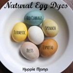 Easter Craft: Natural Egg Dyes