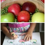 Apple Exploration for Young Kids {PRINTABLES}