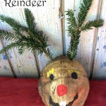 Christmas Craft: Coconut Reindeer