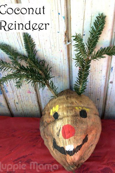 Christmas Craft: Coconut Reindeer