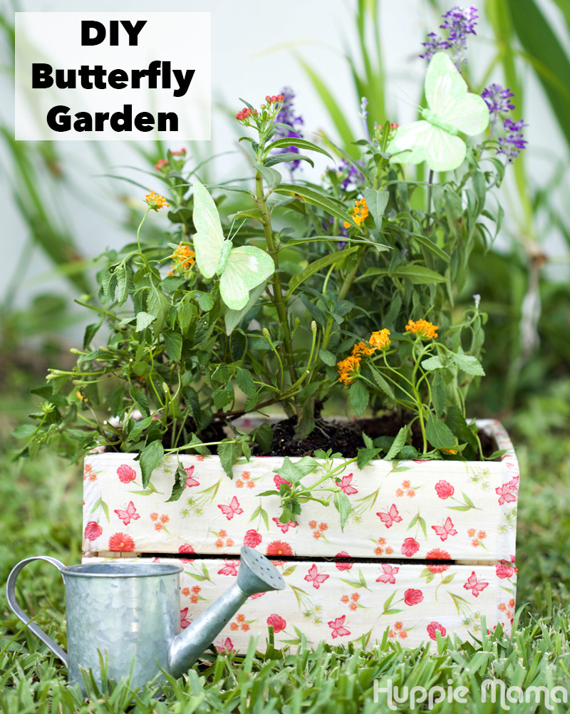 Awesome Nice How To Build A Butterfly Garden ... 800 × 1002 Pixels. «