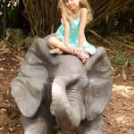 A Trip to Zoo Miami
