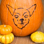 Carve a Dog Pumpkin