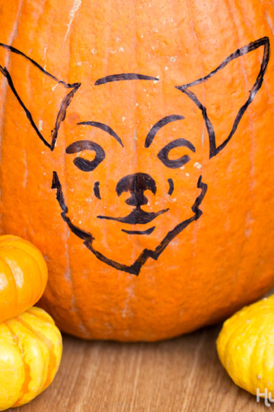 Carve a Dog Pumpkin