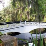 5 Things You Must Do in Charleston