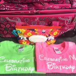 Walt Disney World Parks Birthday Celebration