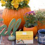 Pumpkin Flower Planters