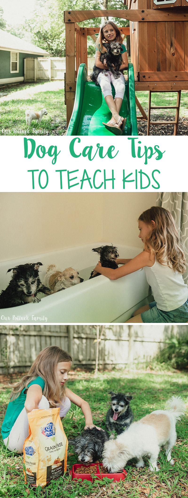 Dog Care Tips to Teach Kids