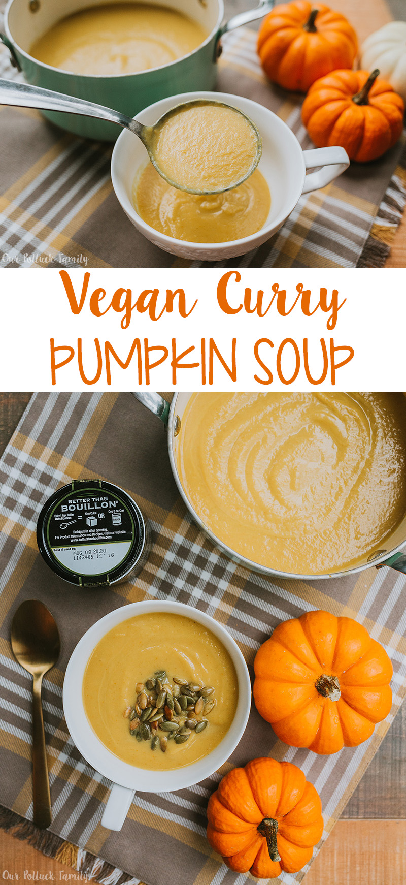 Vegan Curry Pumpkin Soup