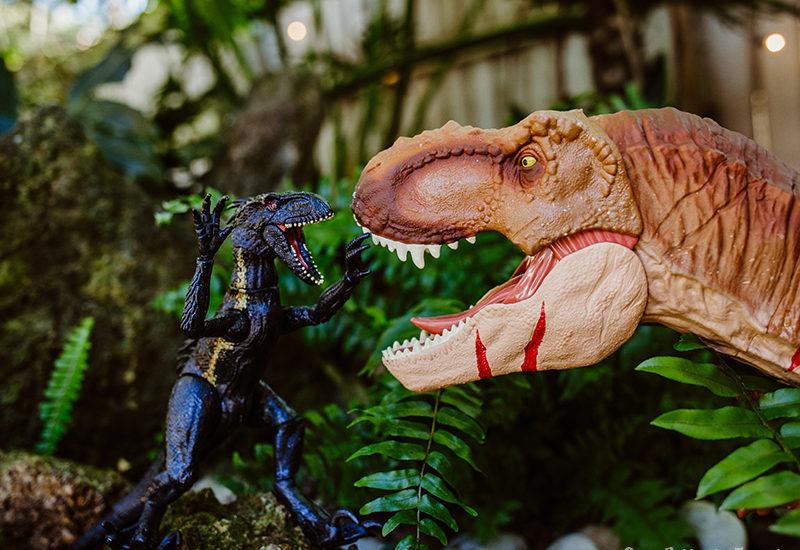 Outdoor Dinosaur Play attack
