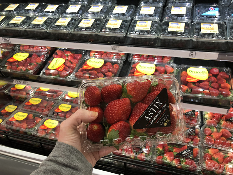 Fresh FL Strawberries
