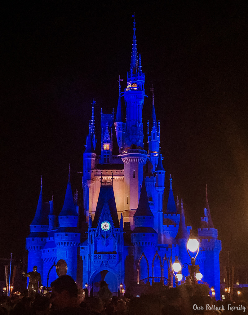 Disney Parks Birthday Vacation castle