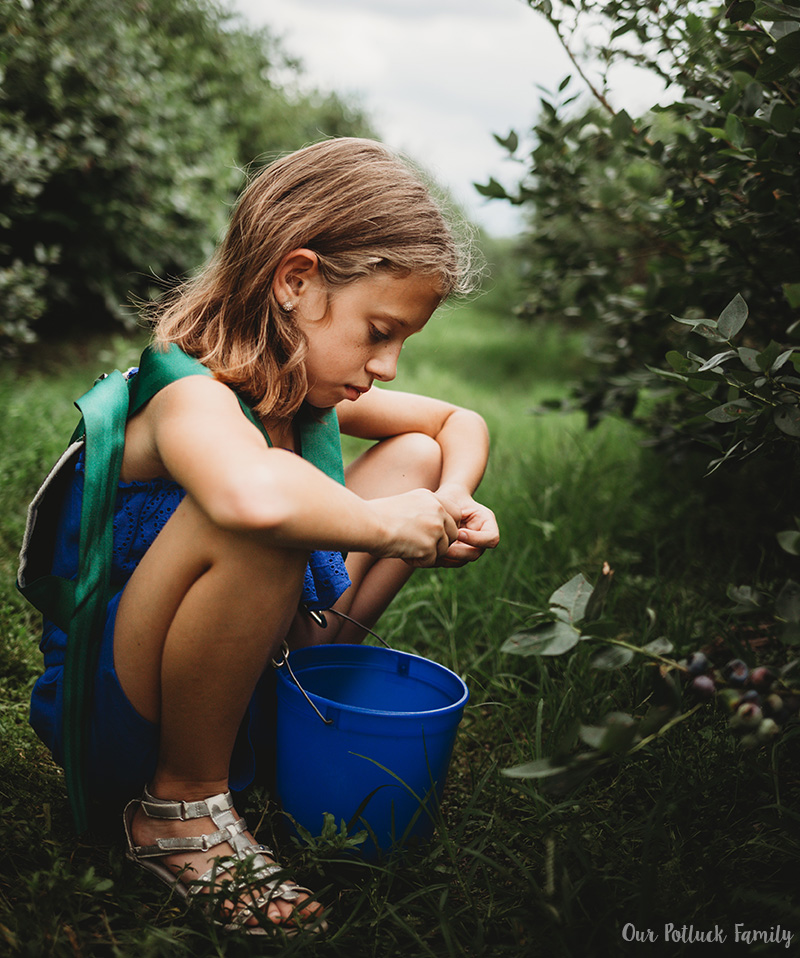 Florida Blueberry Picking girl