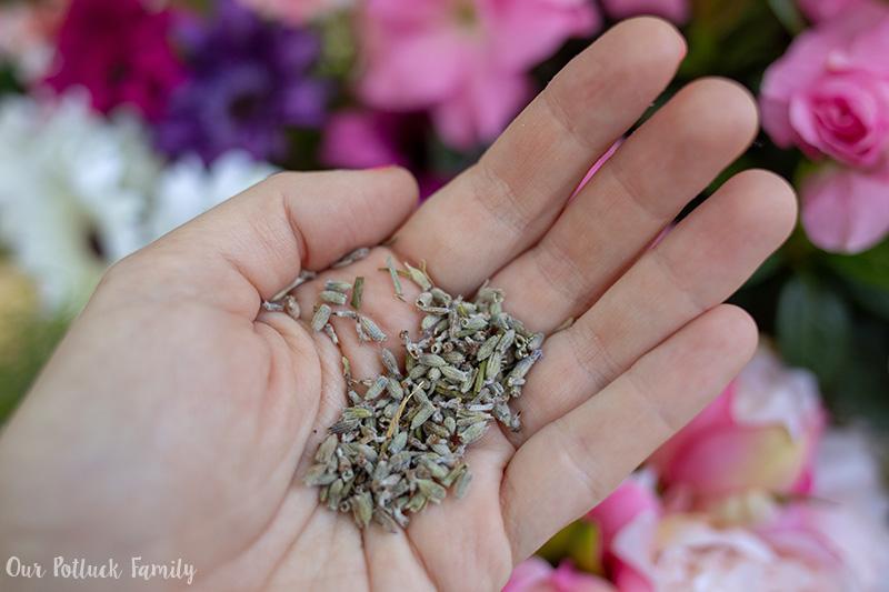 Lavender Vanilla Iced Latte flowers